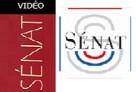 Revoir l'audition publique du directeur de l'AEFE devant une commission permanente du Sénat (18 novembre 2020)