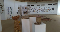 Africa 2020 : projet Land Art et biodiversité au lycée français Saint-Exupéry de Ouagadougou
