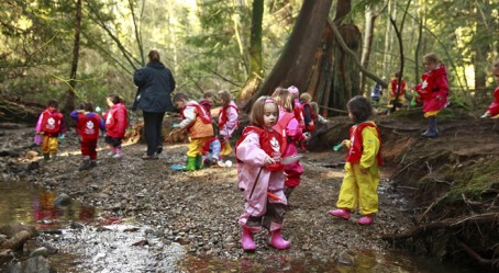À l'école de la forêt
